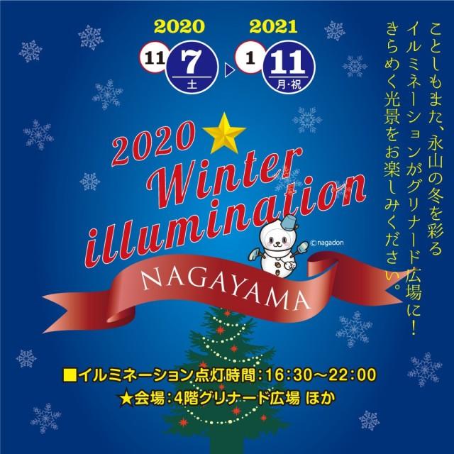 Nagayama Winter Illumination 2020